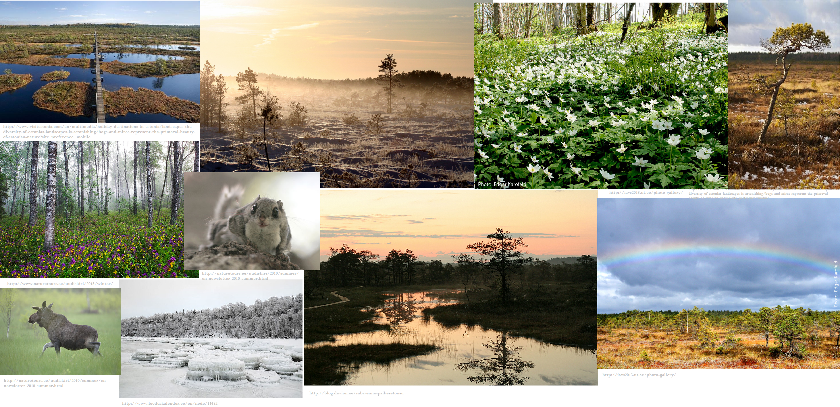 Estonia picturecollaash